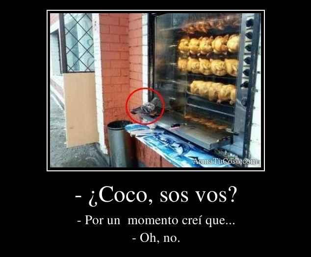 - ¿Coco, sos vos?