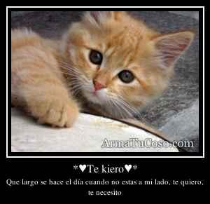 *♥Te kiero♥*