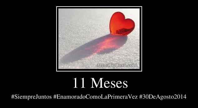 11 Meses