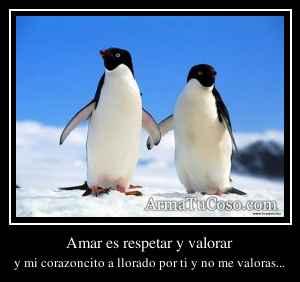 Amar es respetar y valorar