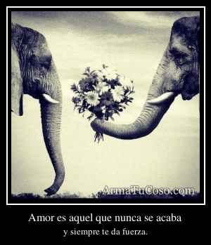 Amor es aquel que nunca se acaba