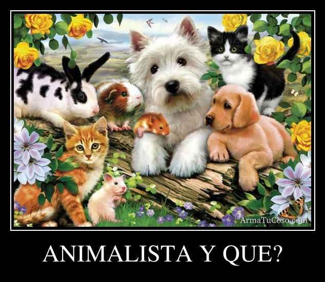 ANIMALISTA Y QUE?