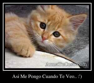 Asi Me Pongo Cuando Te Veo.. :')