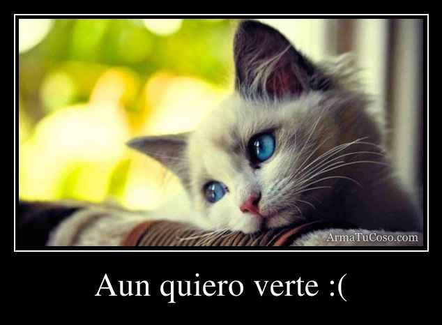 Aun quiero verte :(
