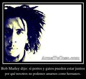 Bob Marley dijo: si perros y gatos pueden estar juntos
