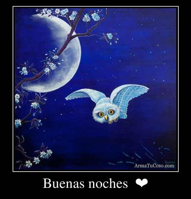 Buenas noches  ❤