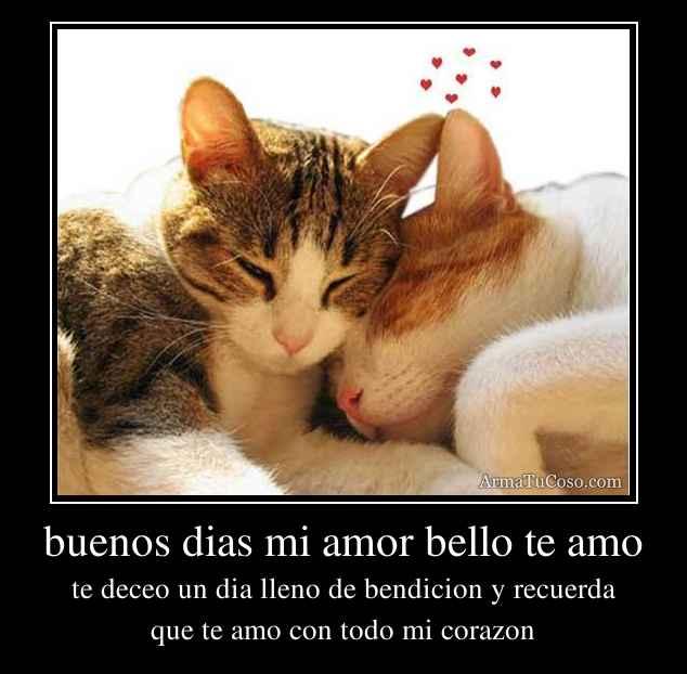 Buenos Dias Mi Amor Quotes. QuotesGram