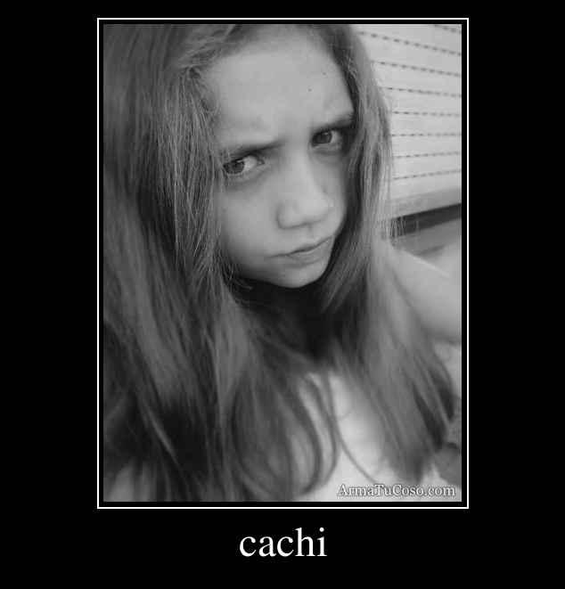 cachi