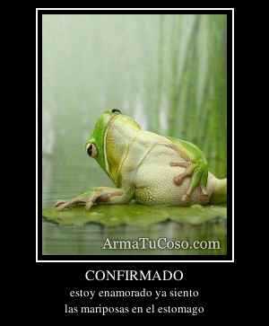 CONFIRMADO