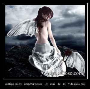 contigo quiero  despertar todos   los  dias   de   mi  vida aless buu