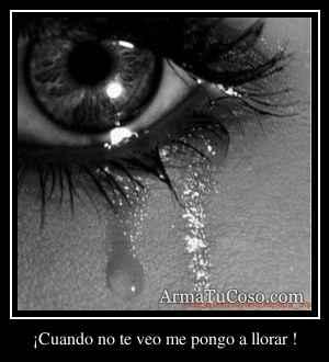 ¡Cuando no te veo me pongo a llorar !