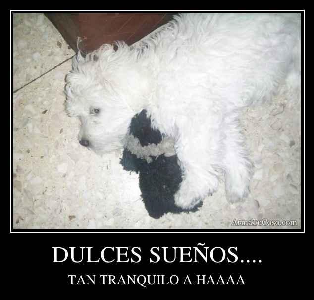 DULCES SUEÑOS....