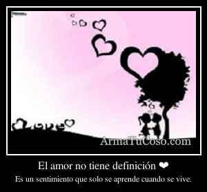 El amor no tiene definición ❤