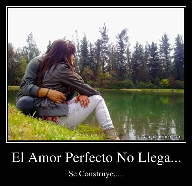 El Amor Perfecto No Llega...