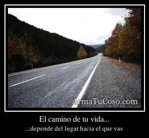 El camino de tu vida...