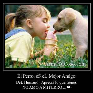 El Perro, eS eL Mejor Amigo