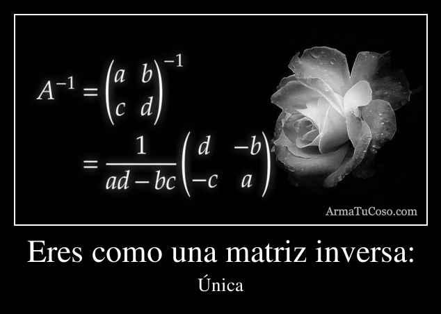 Eres como una matriz inversa: