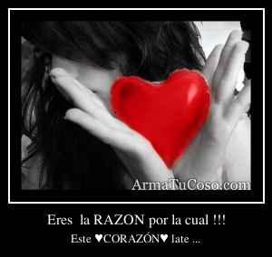 Eres  la RAZON por la cual !!!