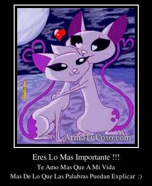 Eres Lo Mas Importante !!!