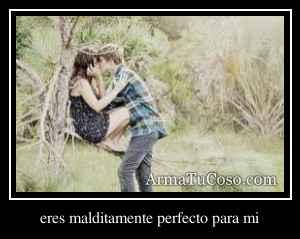eres malditamente perfecto para mi