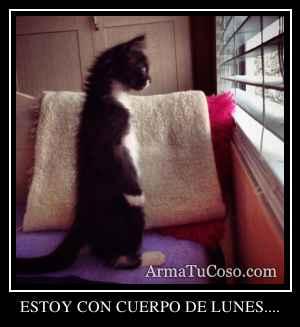ESTOY CON CUERPO DE LUNES....