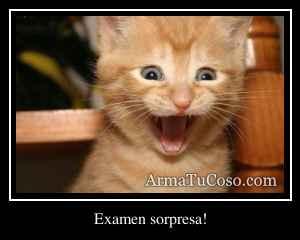 Examen sorpresa!