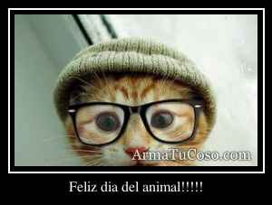 Feliz dia del animal!!!!!