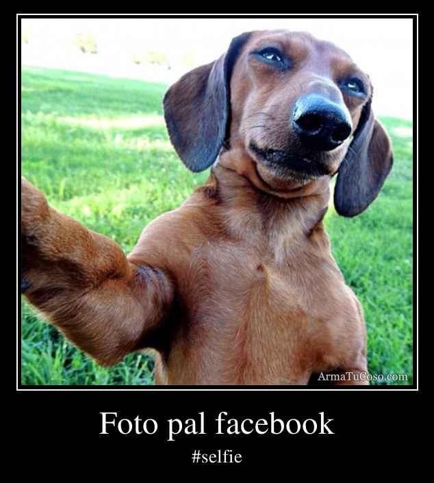 Foto pal facebook