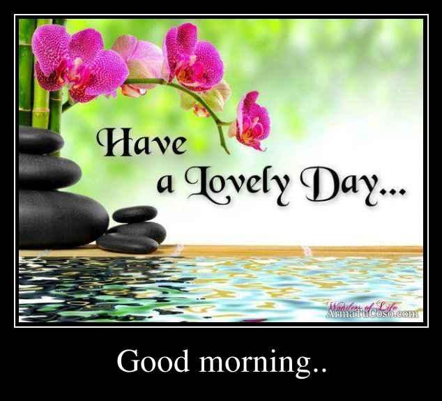 Good Morning Mi Amor Images : Good morning
