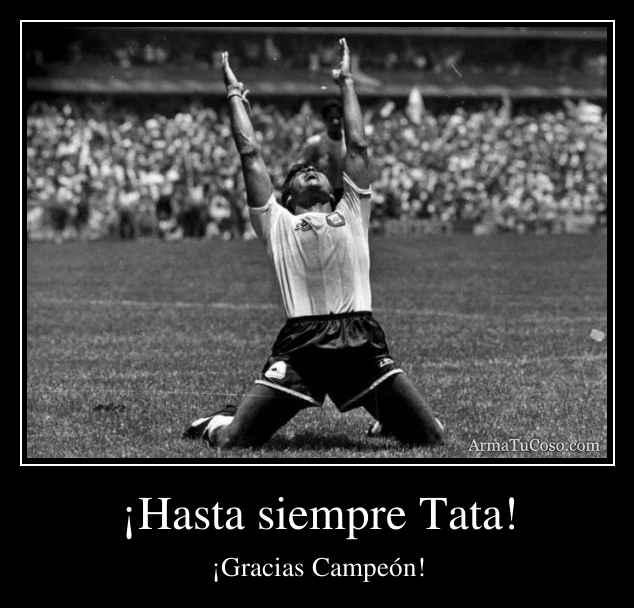 ¡Hasta siempre Tata!