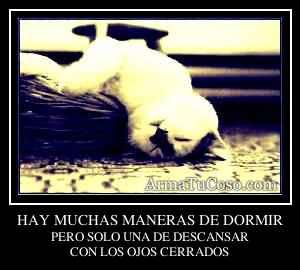 HAY MUCHAS MANERAS DE DORMIR