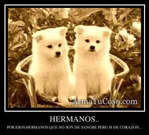 HERMANOS..