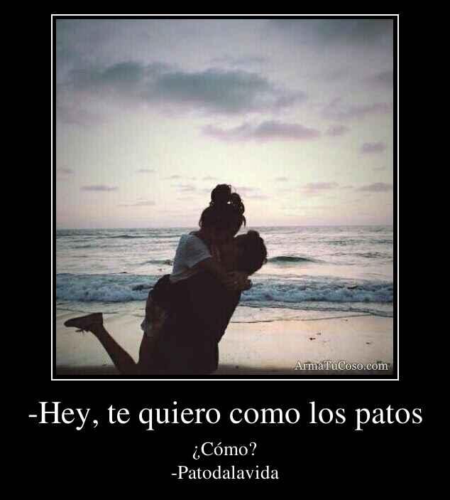 -Hey, te quiero como los patos