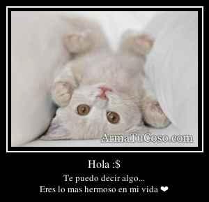 Hola :$
