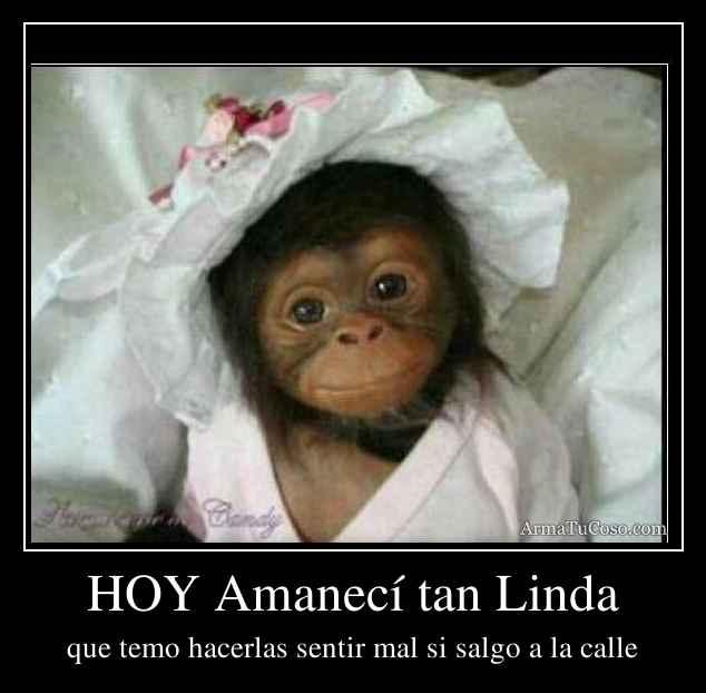HOY Amanecí tan Linda