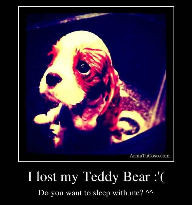 I lost my Teddy Bear :'(