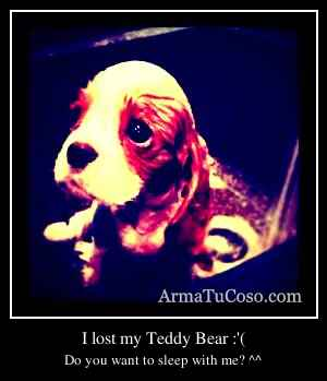 I lost my Teddy Bear :'(