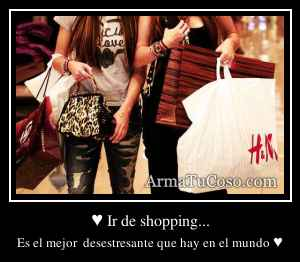 ♥ Ir de shopping...
