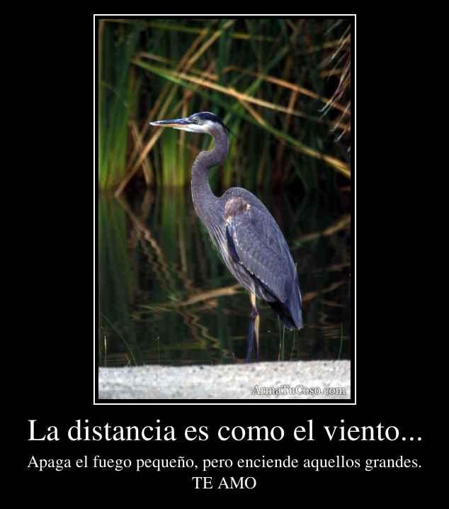 La distancia es como el viento...