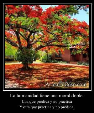 La humanidad tiene una moral doble: