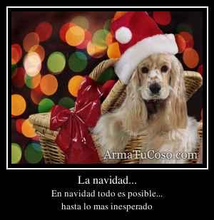 La navidad...