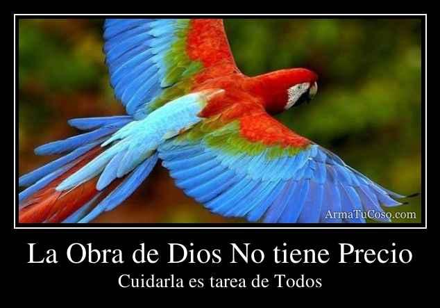 La Obra de Dios No tiene Precio
