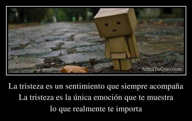 La tristeza es un sentimiento que siempre acompaña