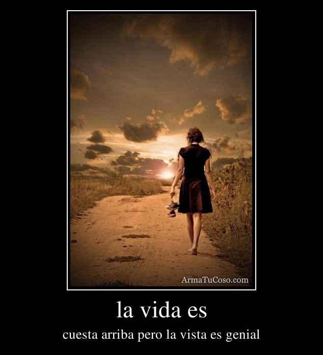 la vida es