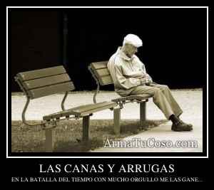LAS CANAS Y ARRUGAS