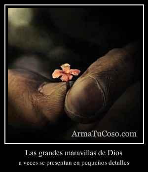 Las grandes maravillas de Dios