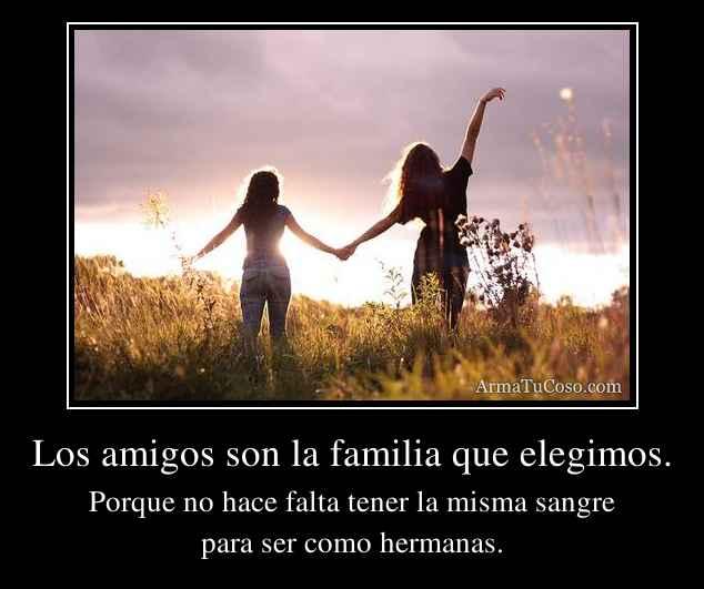 Los amigos son la familia que elegimos.