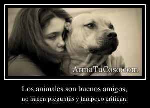 Los animales son buenos amigos,