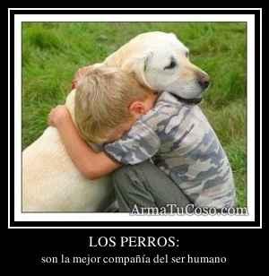 LOS PERROS:
