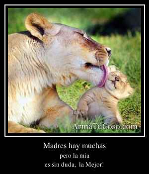 Madres hay muchas